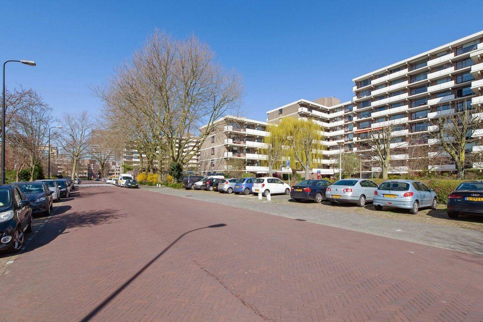 Hammarskjoldlaan 293, Rijswijk foto-24 blur