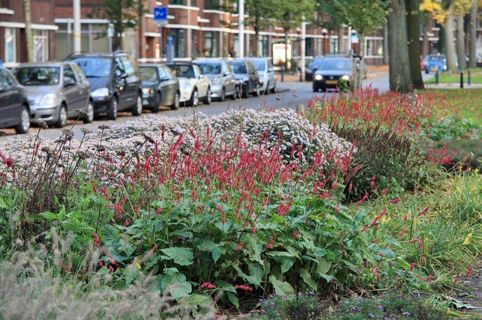 Thorbeckelaan 189, Den Haag foto-32 blur