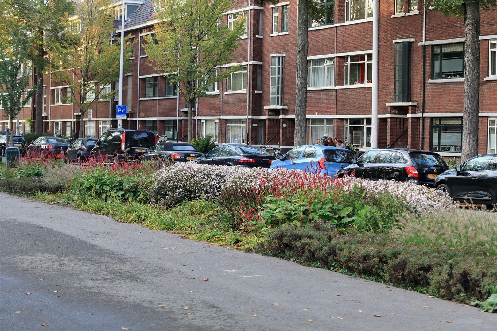 Thorbeckelaan 189, Den Haag foto-33 blur