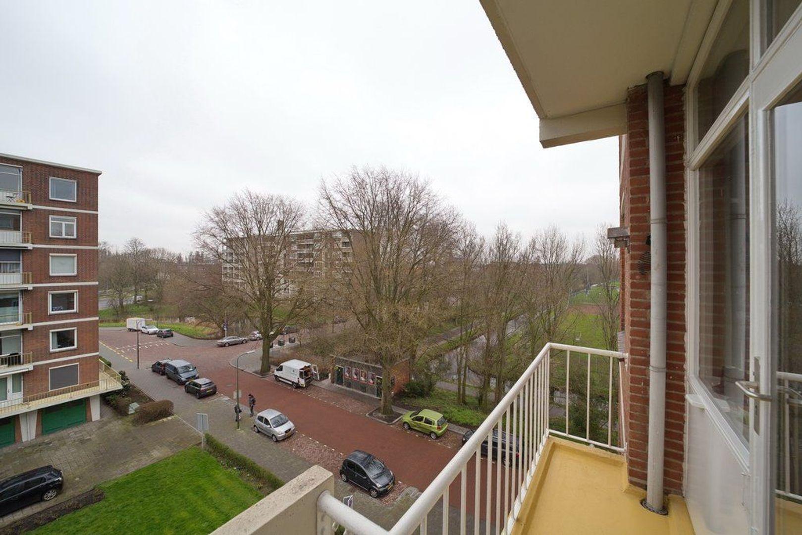 Ranonkelstraat 125, Den Haag foto-23 blur