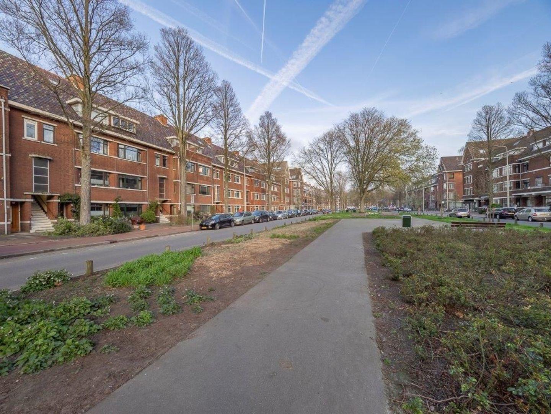 Thorbeckelaan 199, Den Haag foto-20 blur
