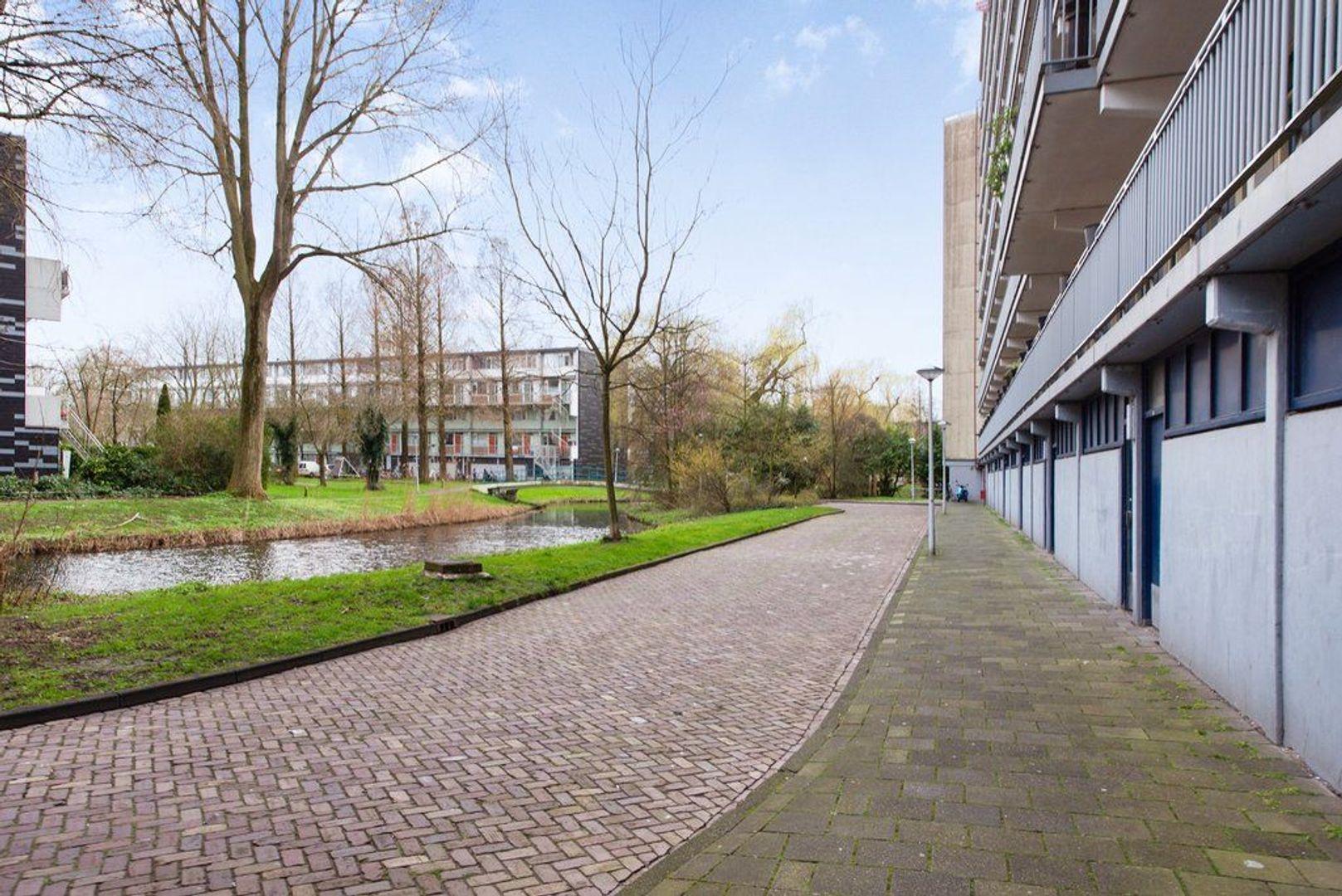 Condorhorst 144, Leiden foto-41 blur