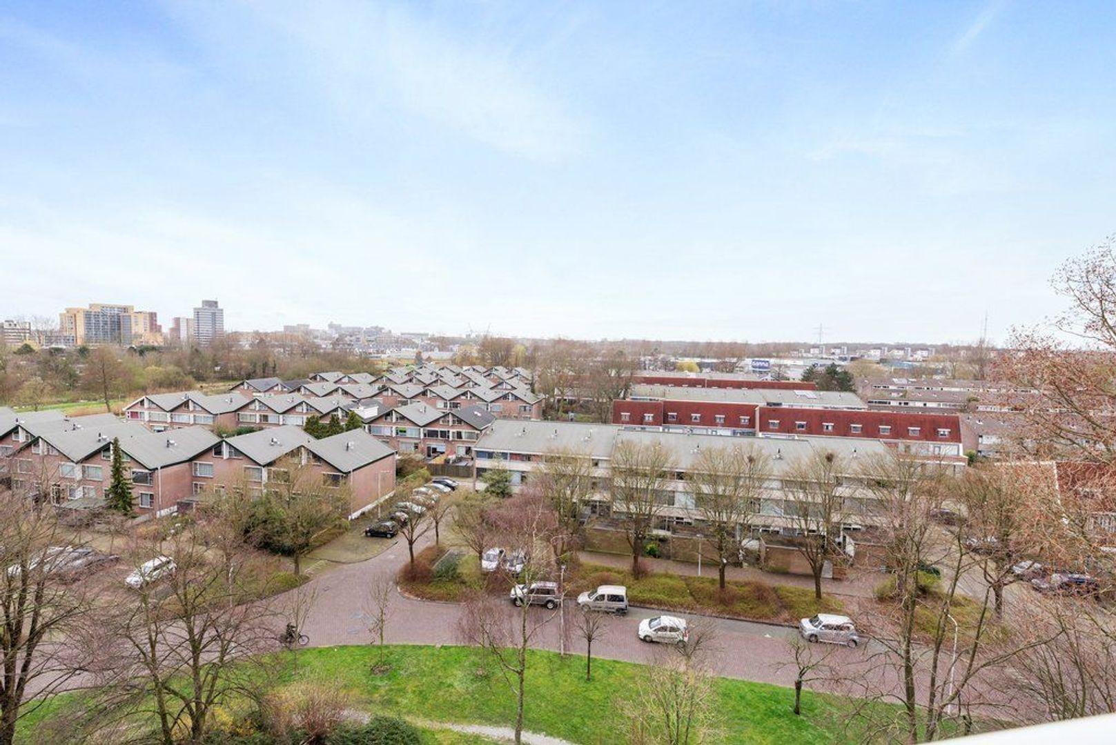 Condorhorst 144, Leiden foto-28 blur