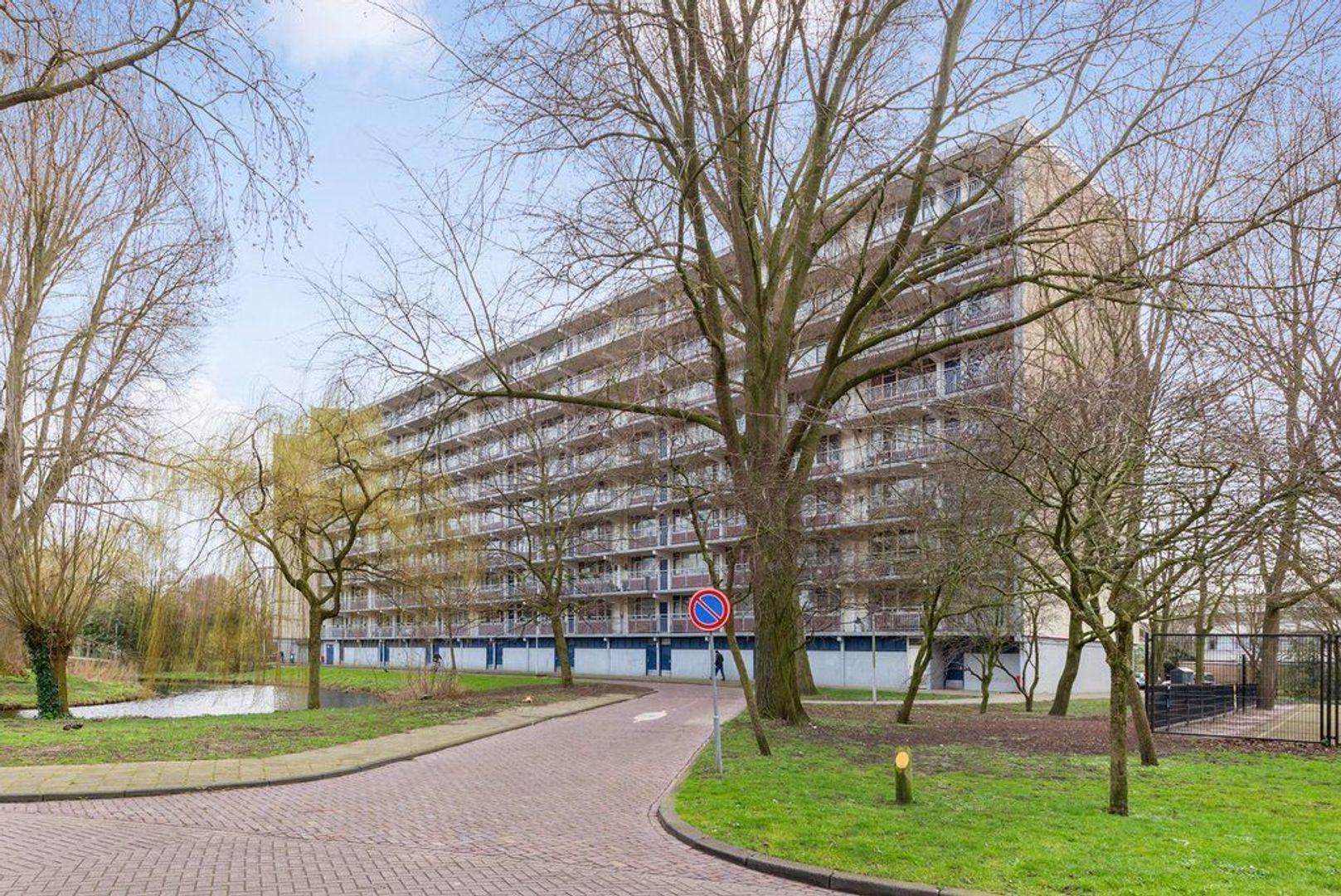 Condorhorst 144, Leiden foto-40 blur