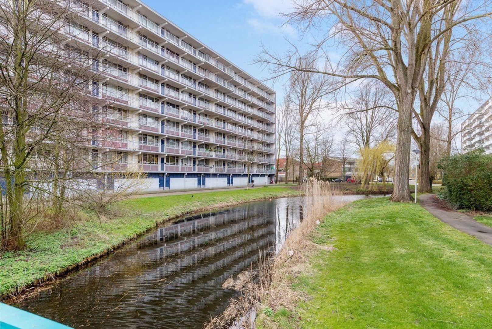 Condorhorst 144, Leiden foto-42 blur