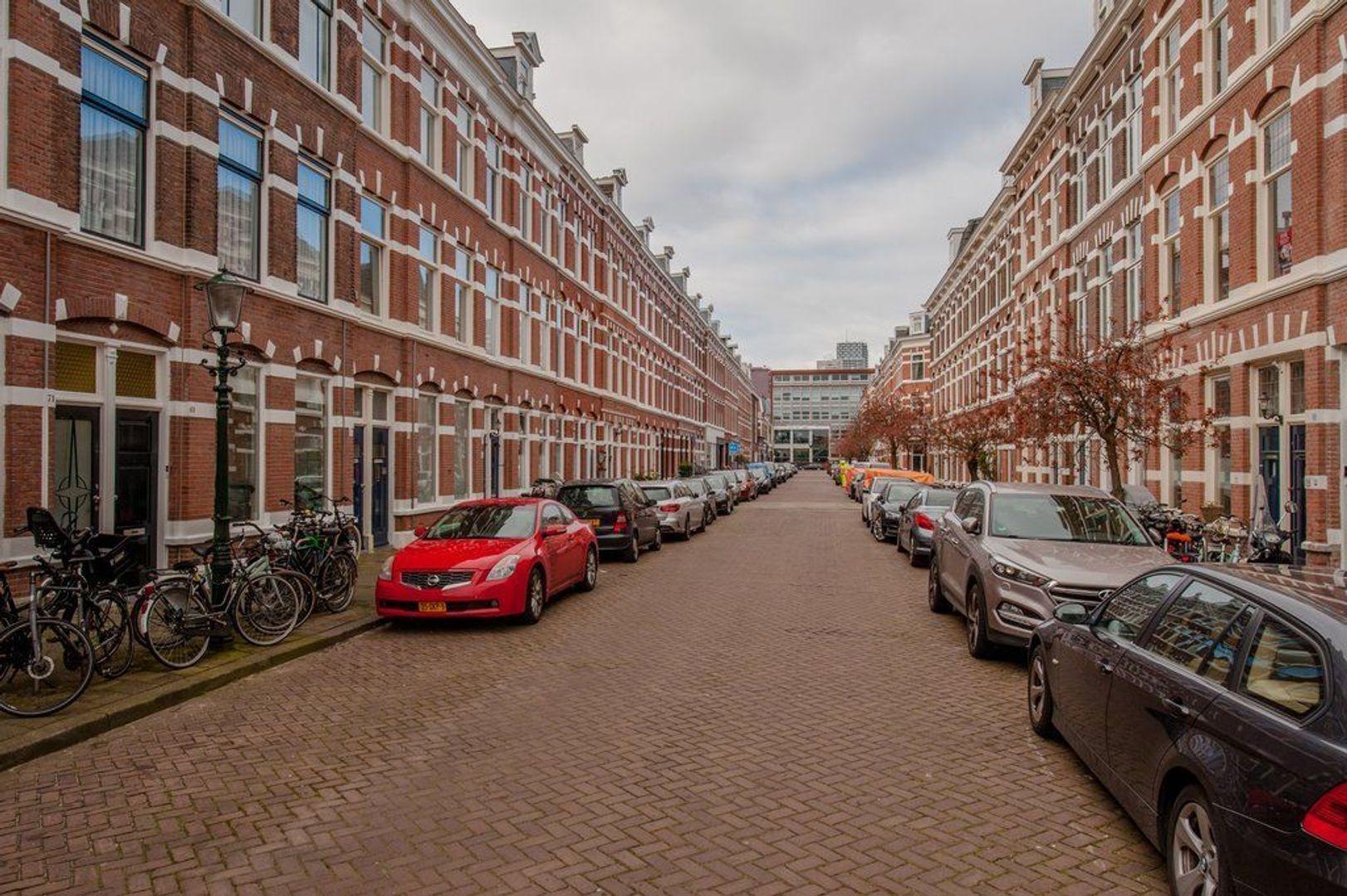 Rijklof van Goensstraat 65, Den Haag foto-1 blur