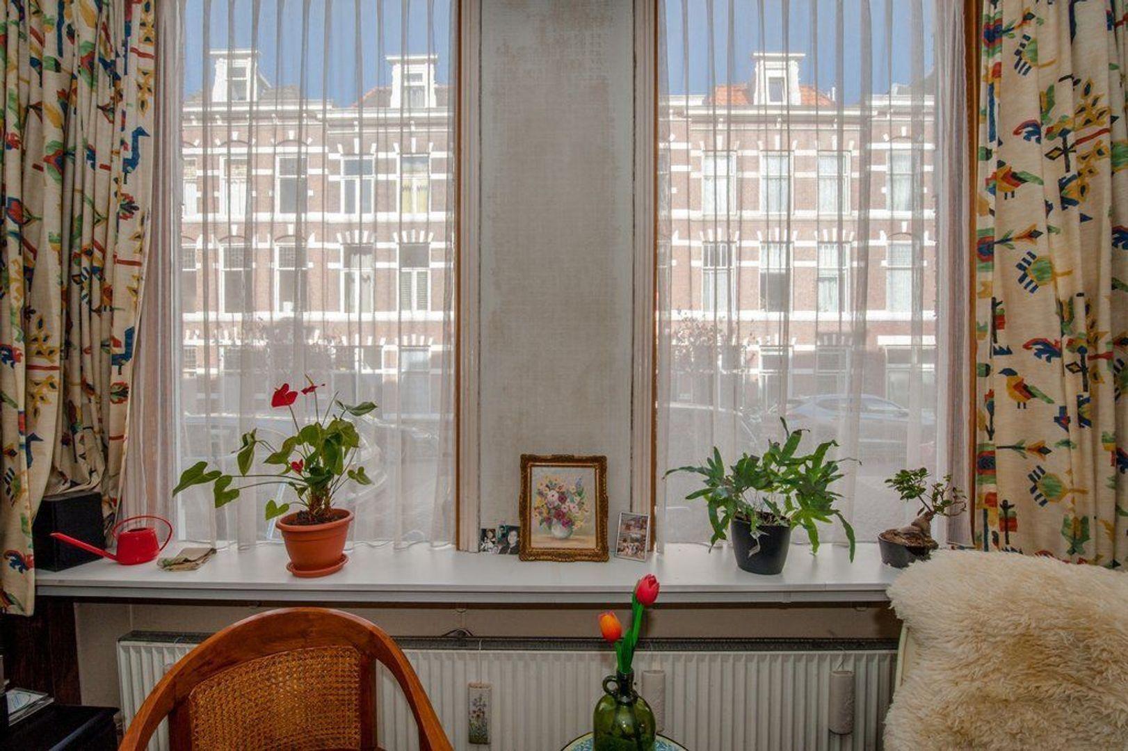 Rijklof van Goensstraat 65, Den Haag foto-5 blur