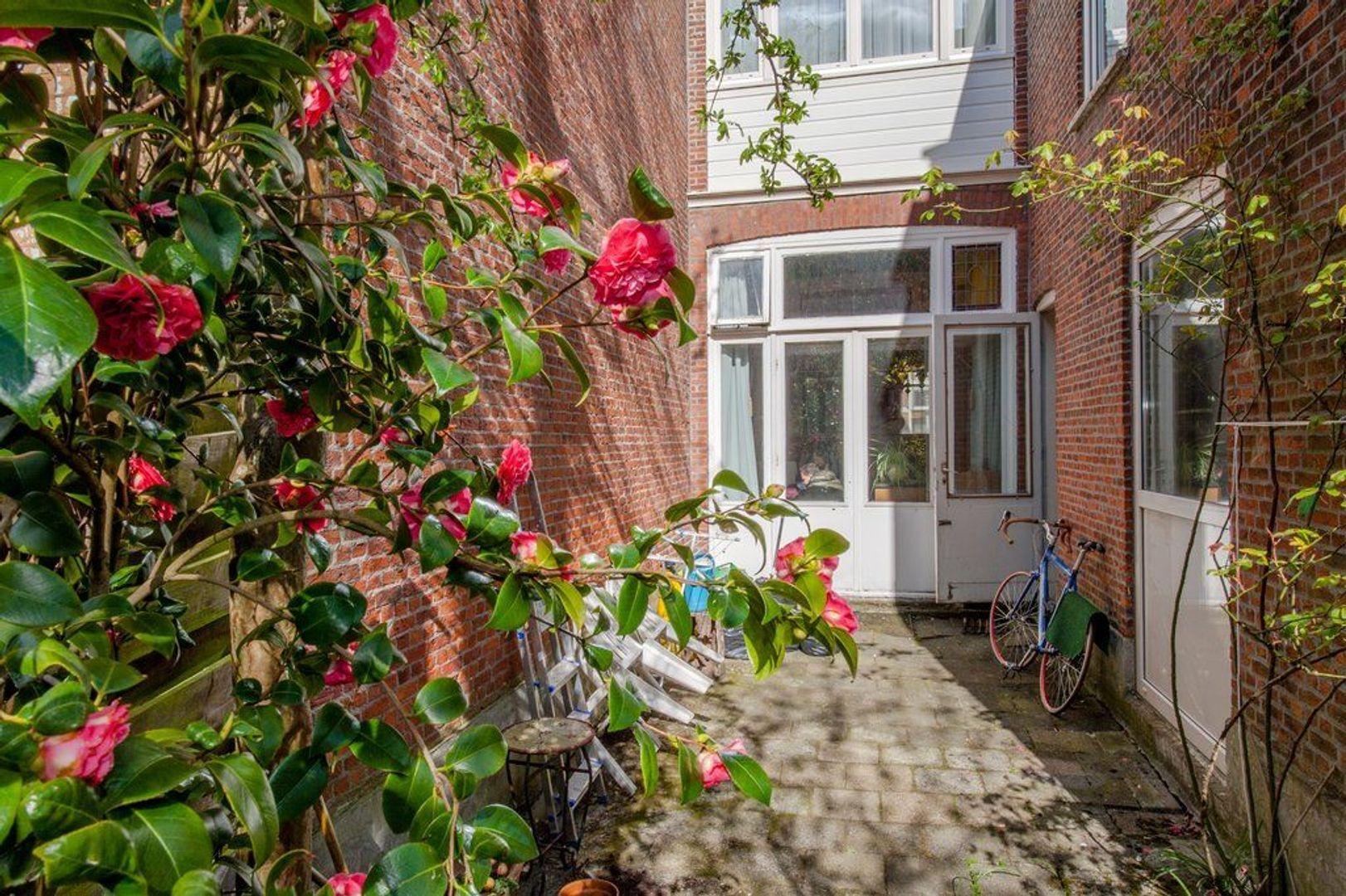 Rijklof van Goensstraat 65, Den Haag foto-23 blur