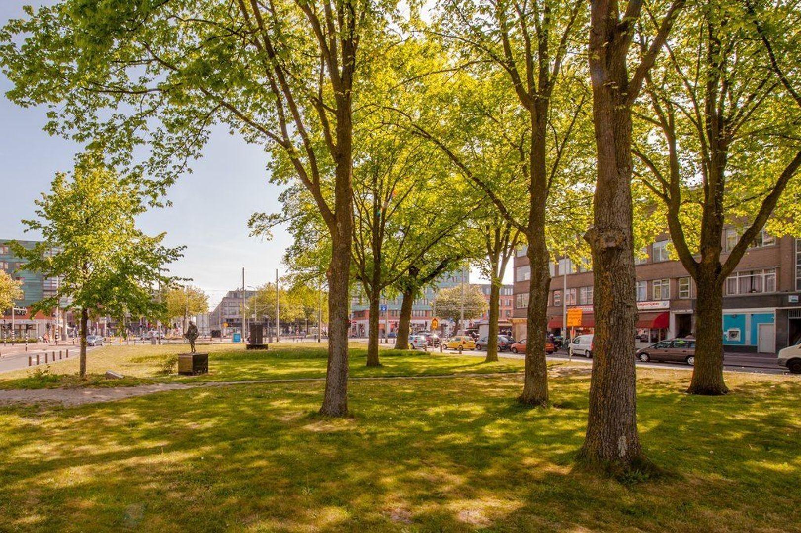 Hobbemaplein 41, Den Haag foto-15 blur