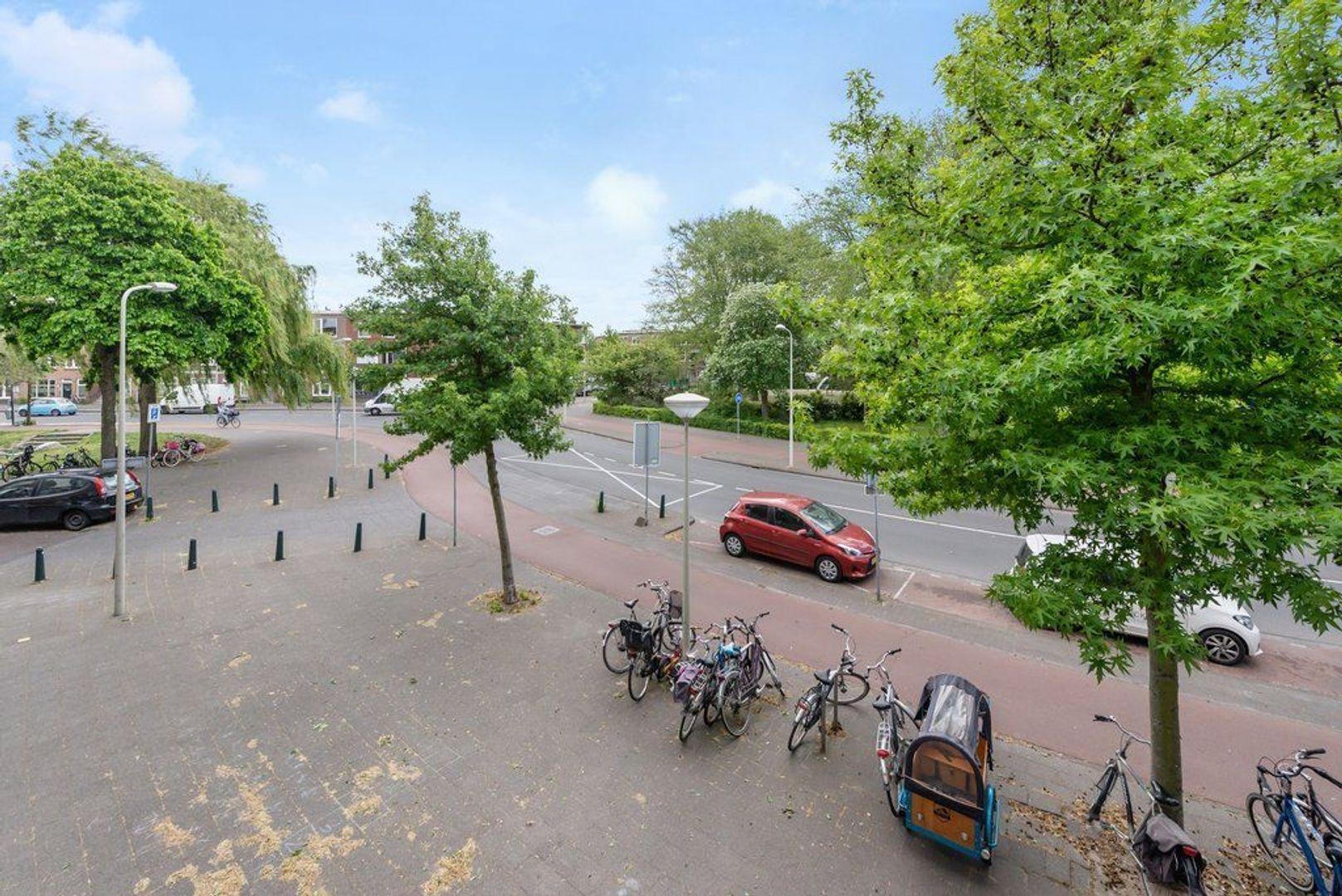 Mient 165, Den Haag foto-54 blur