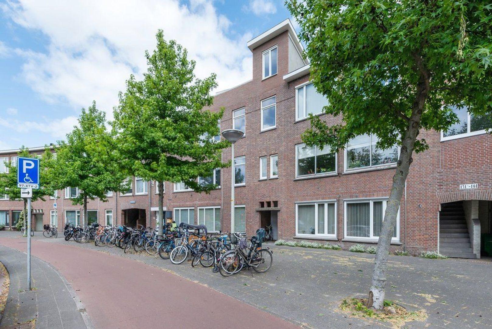 Mient 165, Den Haag foto-6 blur