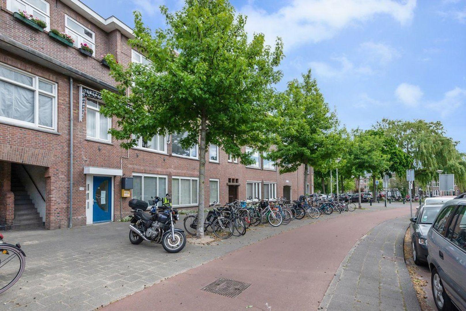 Mient 165, Den Haag foto-55 blur