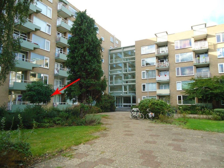 Elisabeth Brugsmaweg 1 107, Den Haag foto-13 blur