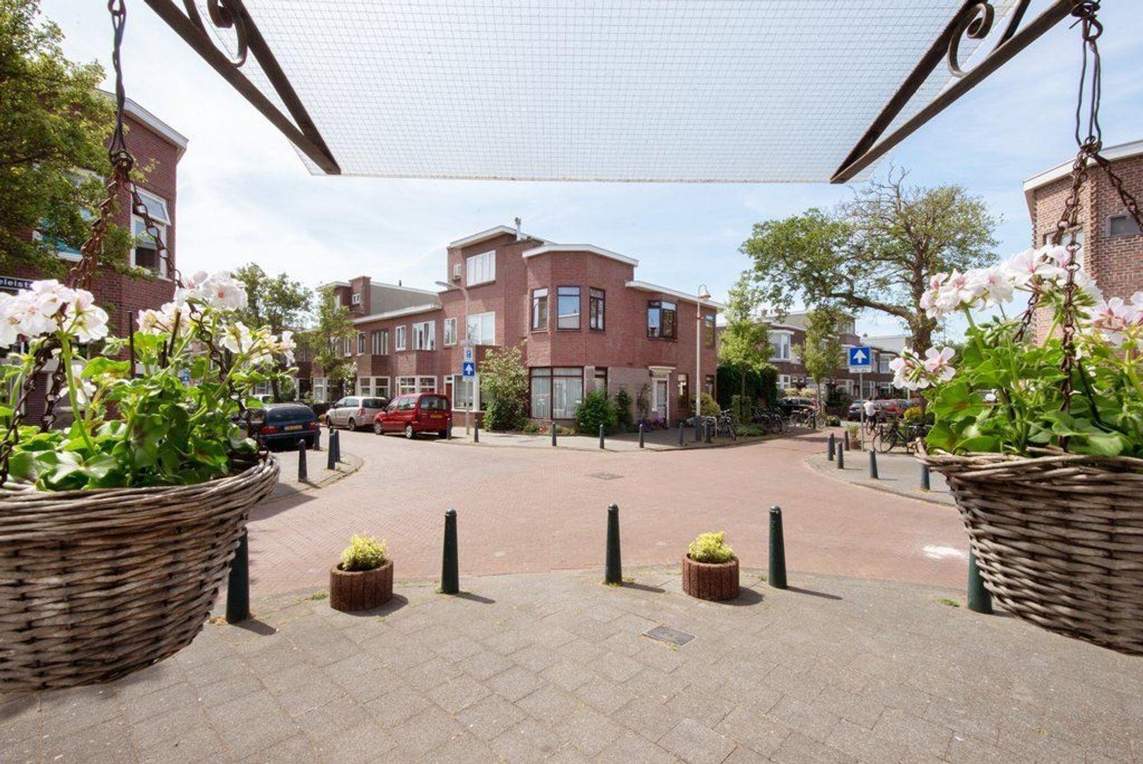 Kamillestraat 15, Den Haag foto-6 blur