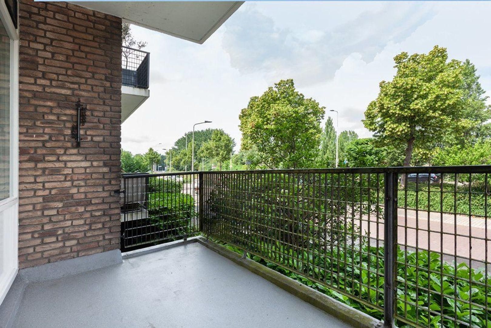 Haagweg 262, Leiden foto-8 blur