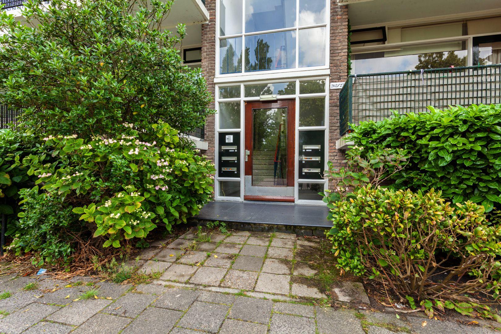 Haagweg 262, Leiden foto-23 blur