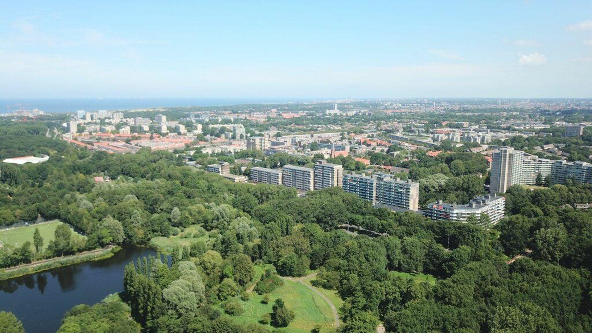 Hertog Albrechtlaan 19, Den Haag foto-27 blur