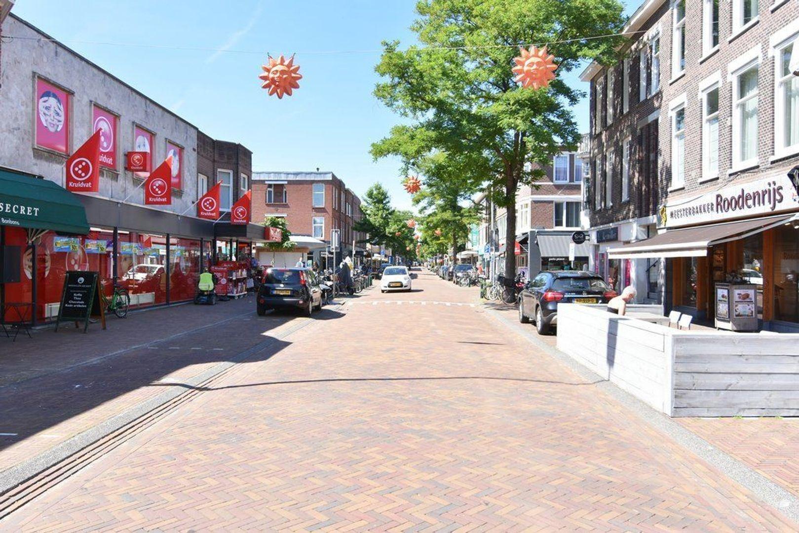 Abeelstraat 54, Den Haag foto-31 blur