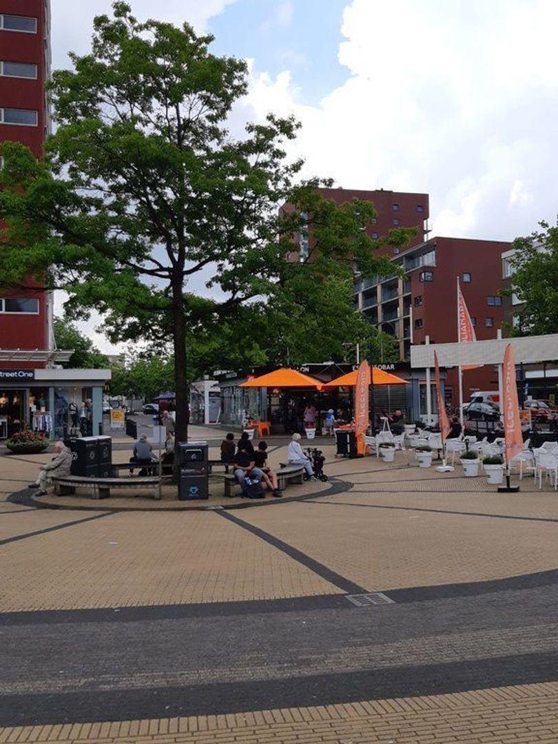 van Tuyll van Serooskerkenstraat 113, Voorburg foto-15 blur