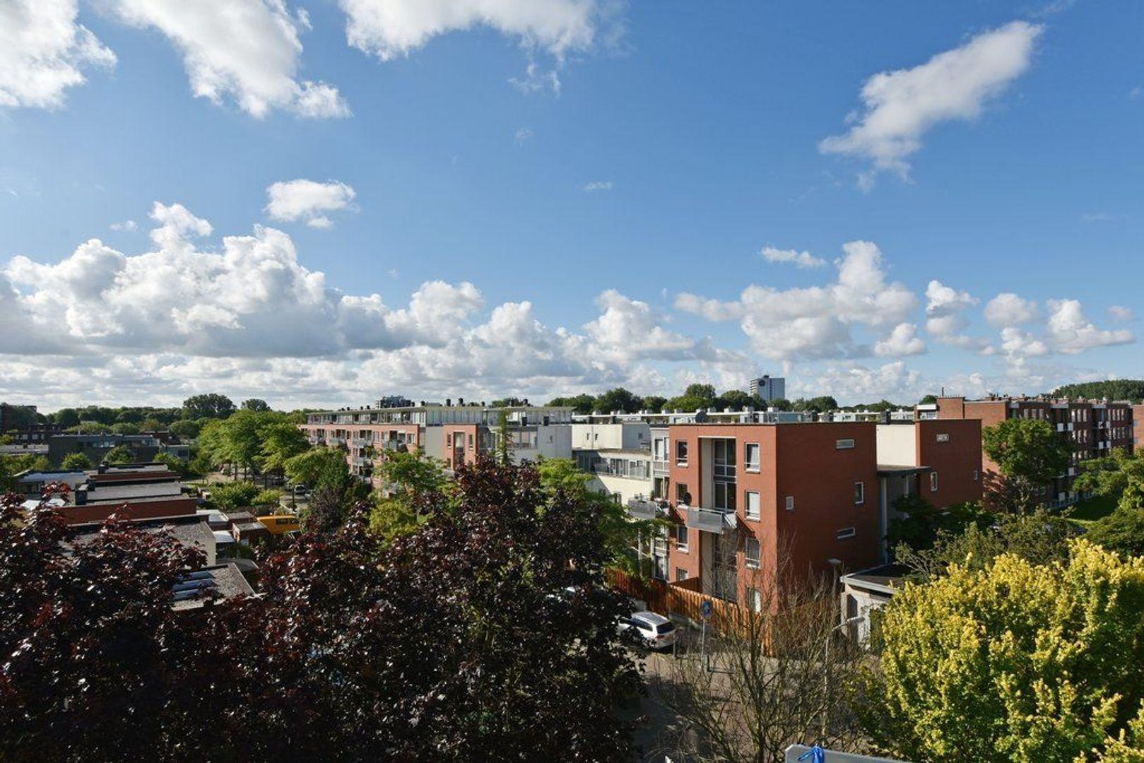 Hengelolaan 1216, Den Haag foto-10 blur
