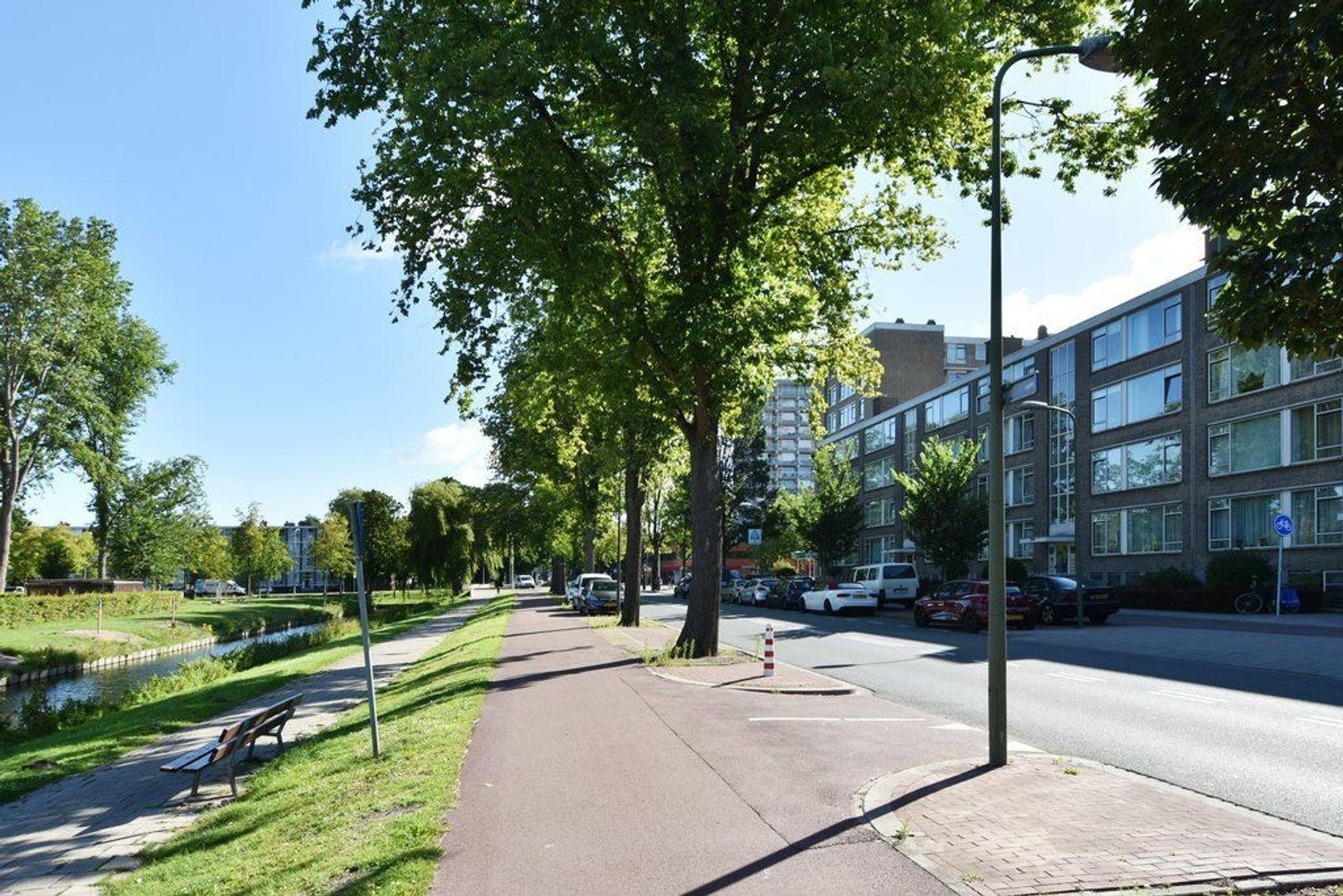 Hengelolaan 1216, Den Haag foto-25 blur