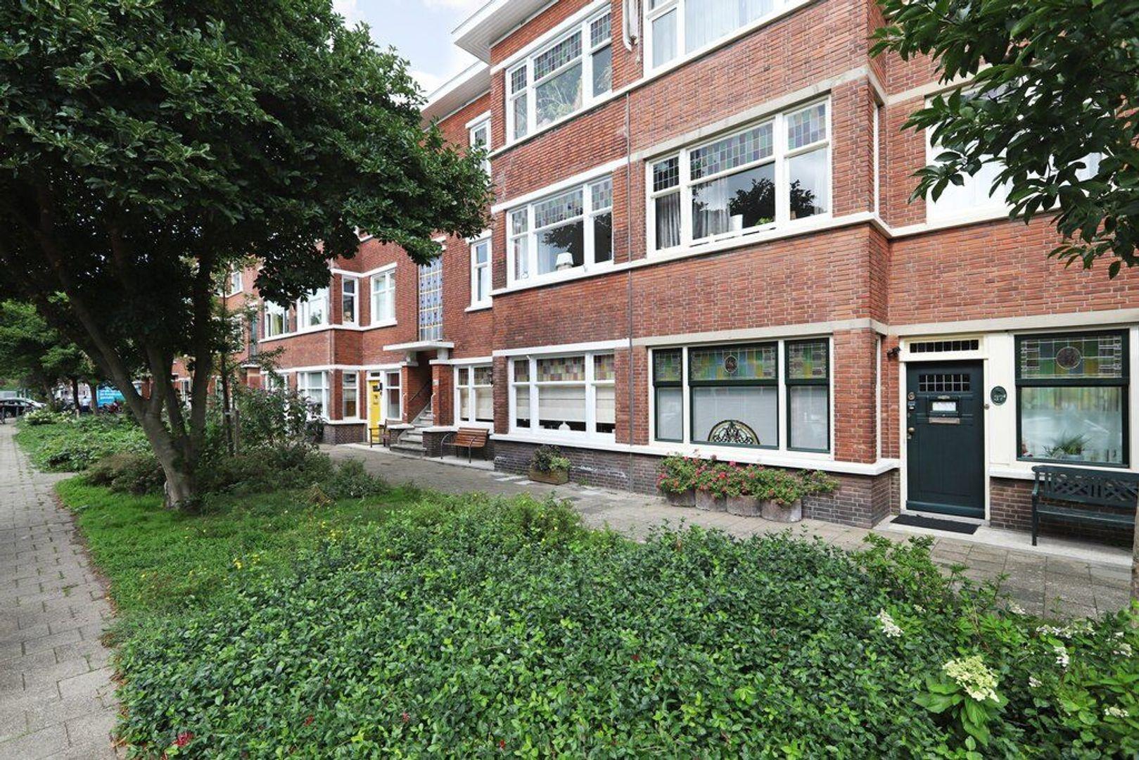 Abrikozenstraat 41, Den Haag foto-41 blur
