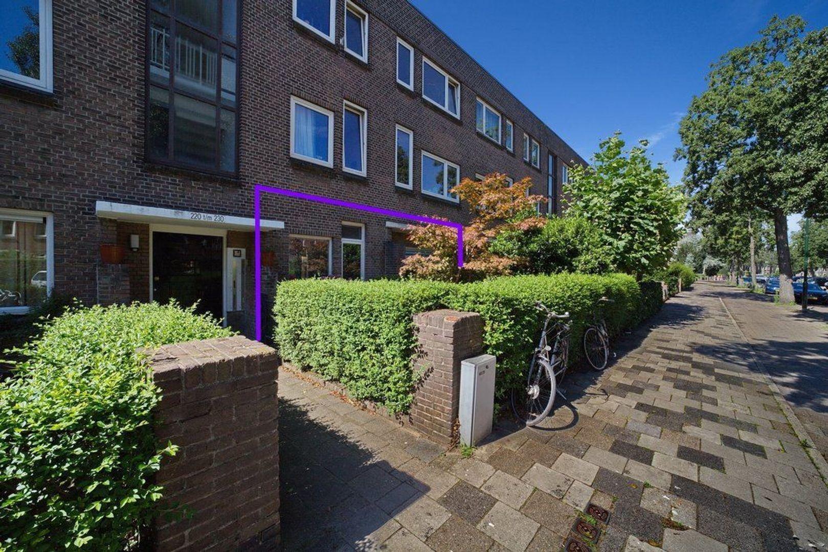 Koningin Wilhelminalaan 230, Voorburg foto-24 blur