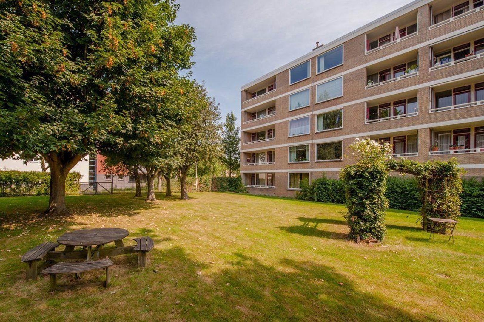Mozartstraat 271, Leiden foto-44 blur