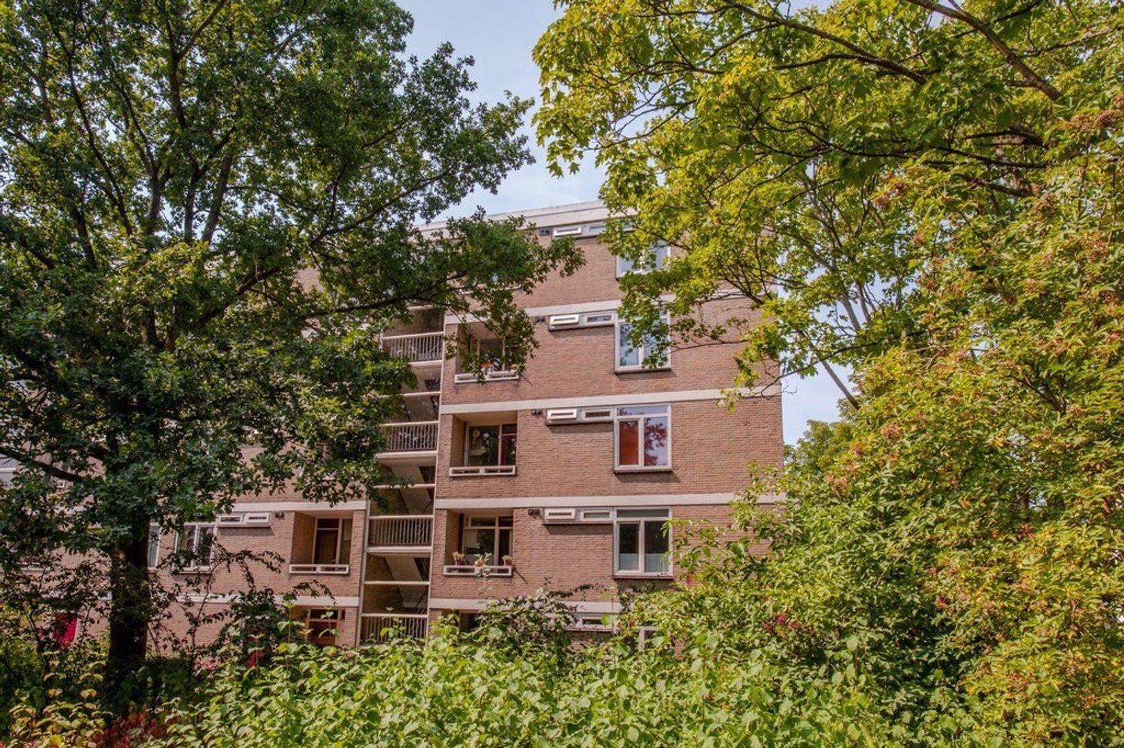 Mozartstraat 271, Leiden foto-39 blur