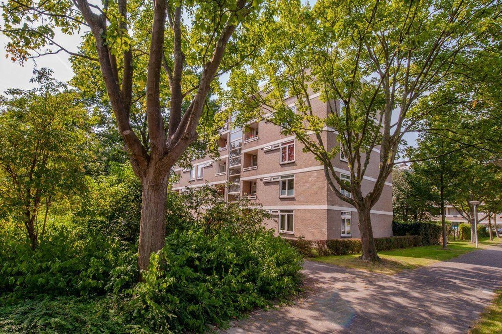Mozartstraat 271, Leiden foto-40 blur