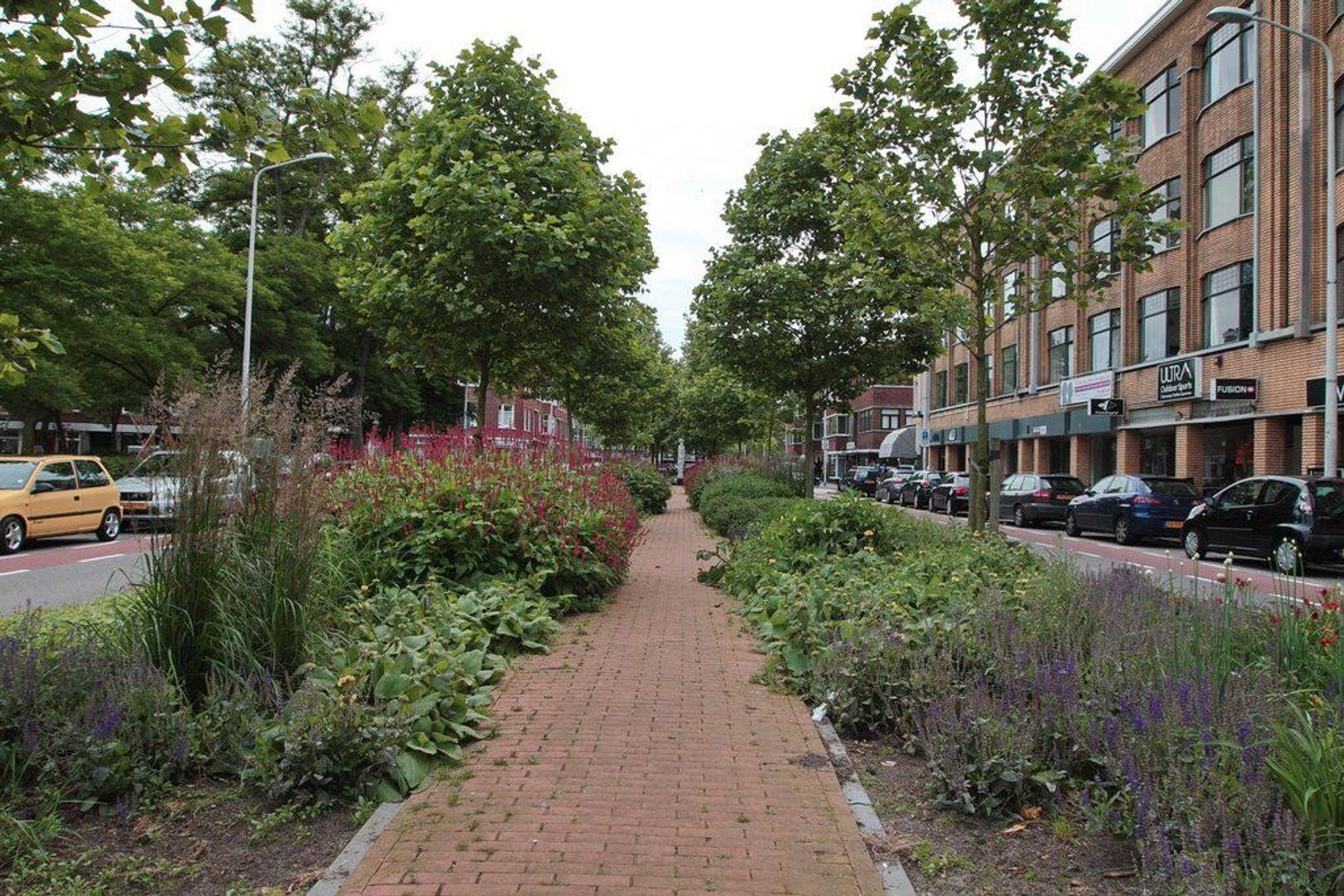 Appelstraat 157, Den Haag foto-25 blur
