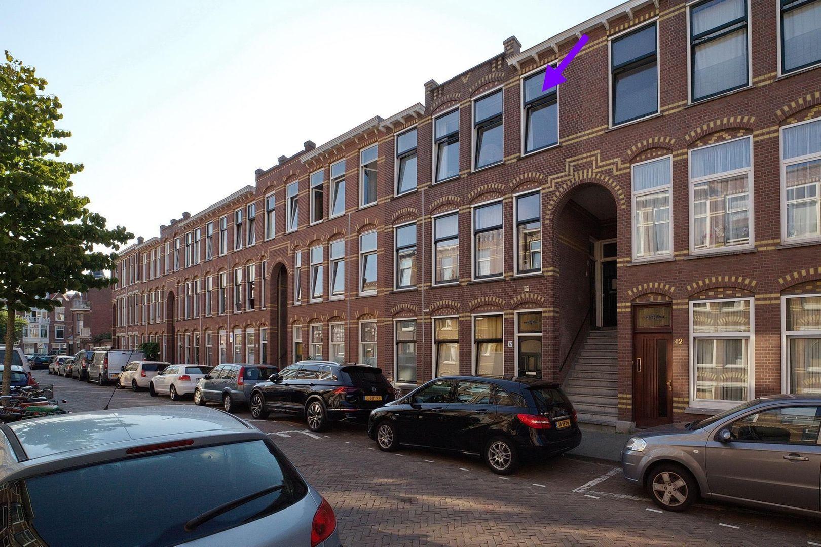 Halleystraat 36, Den Haag foto-18 blur