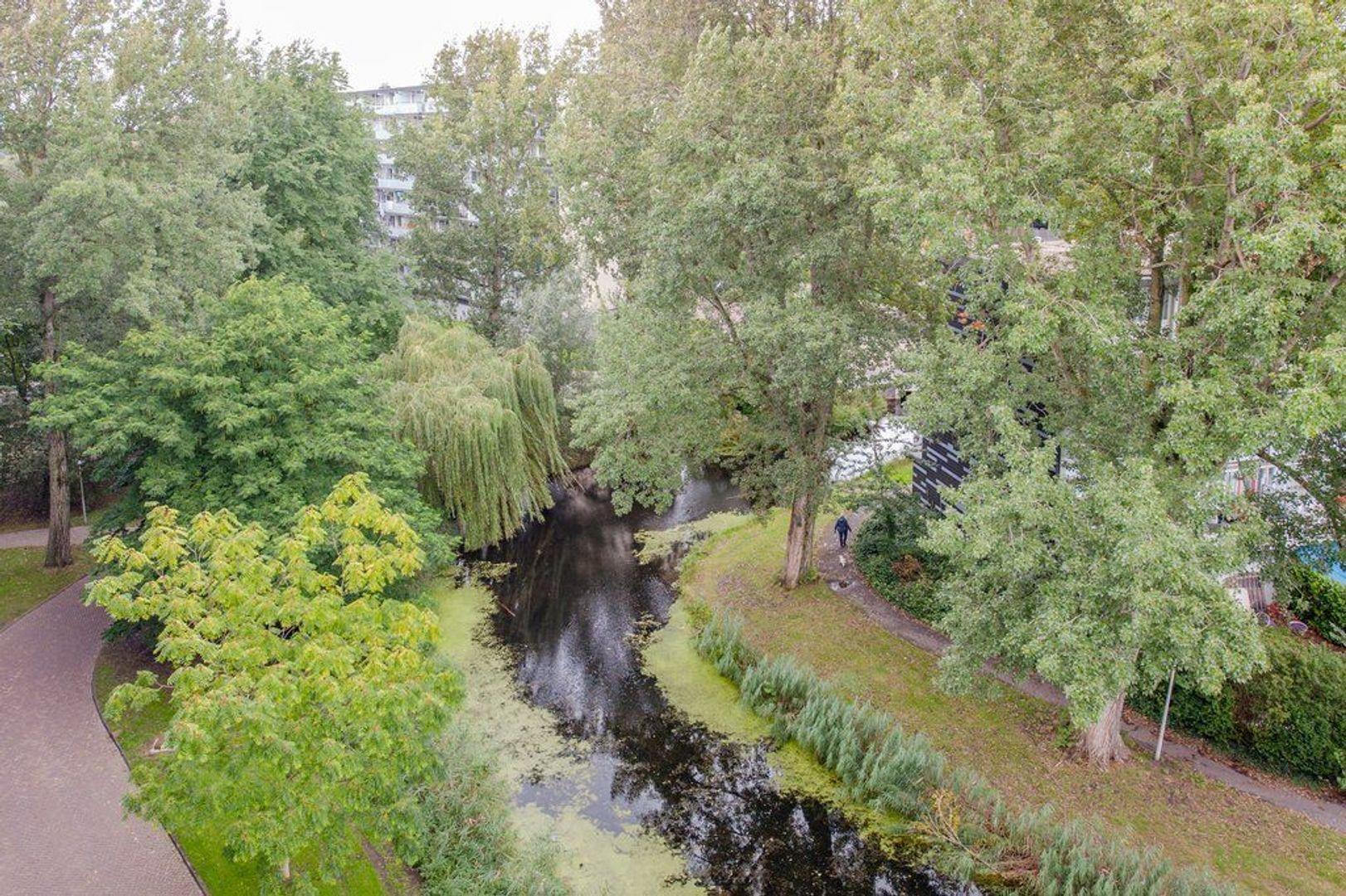 Condorhorst 143, Leiden foto-36 blur
