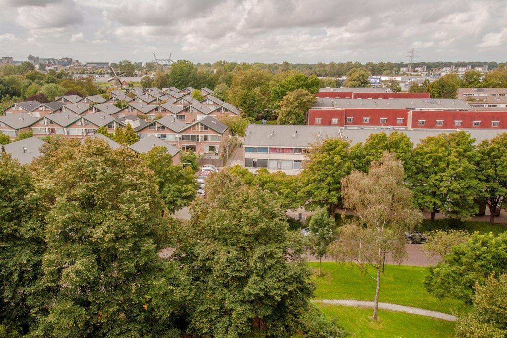 Condorhorst 143, Leiden foto-30 blur