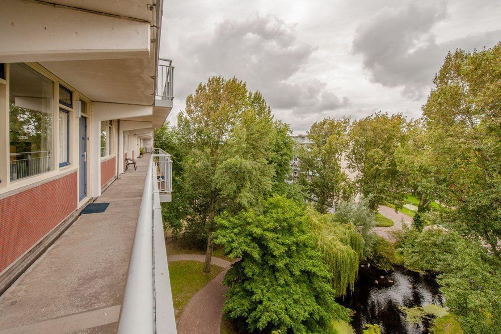 Condorhorst 143, Leiden foto-35 blur