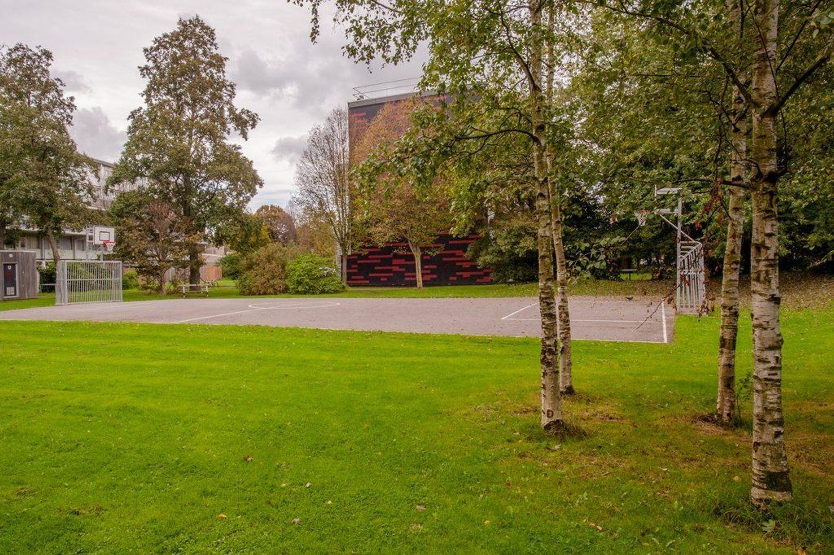 Condorhorst 143, Leiden foto-43 blur