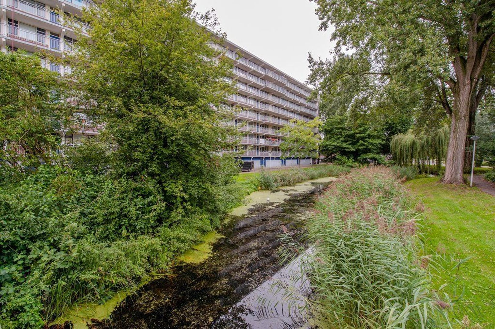 Condorhorst 143, Leiden foto-39 blur