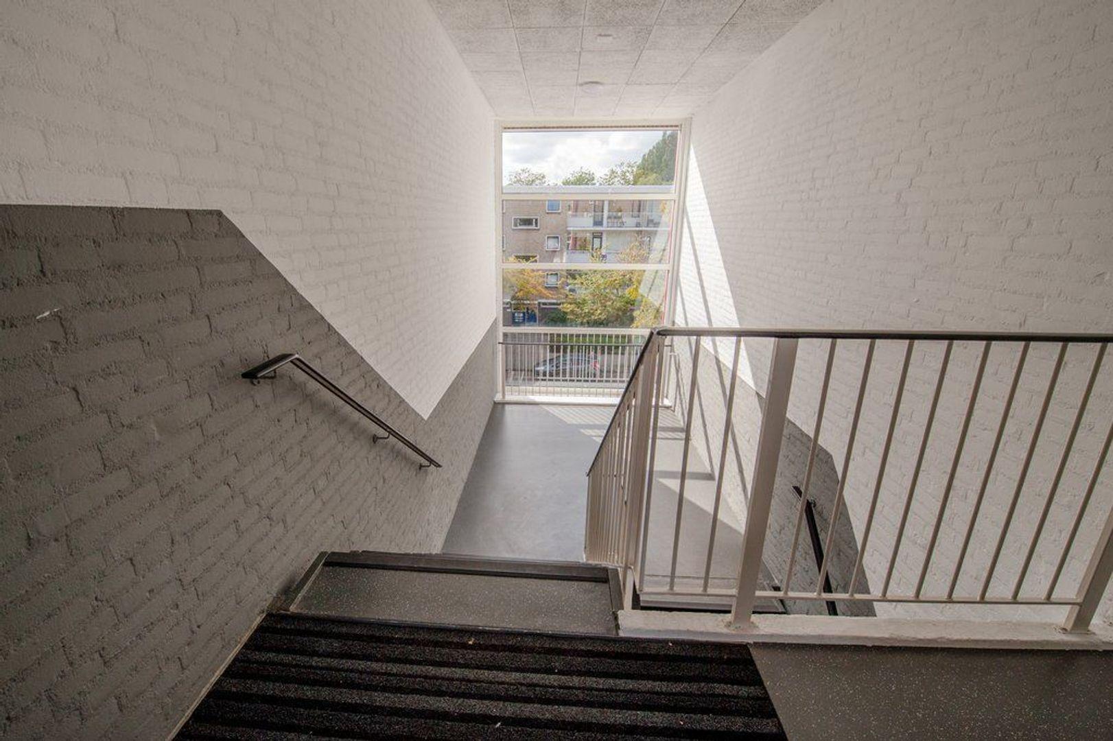 Brahmslaan 46, Leiden foto-31 blur