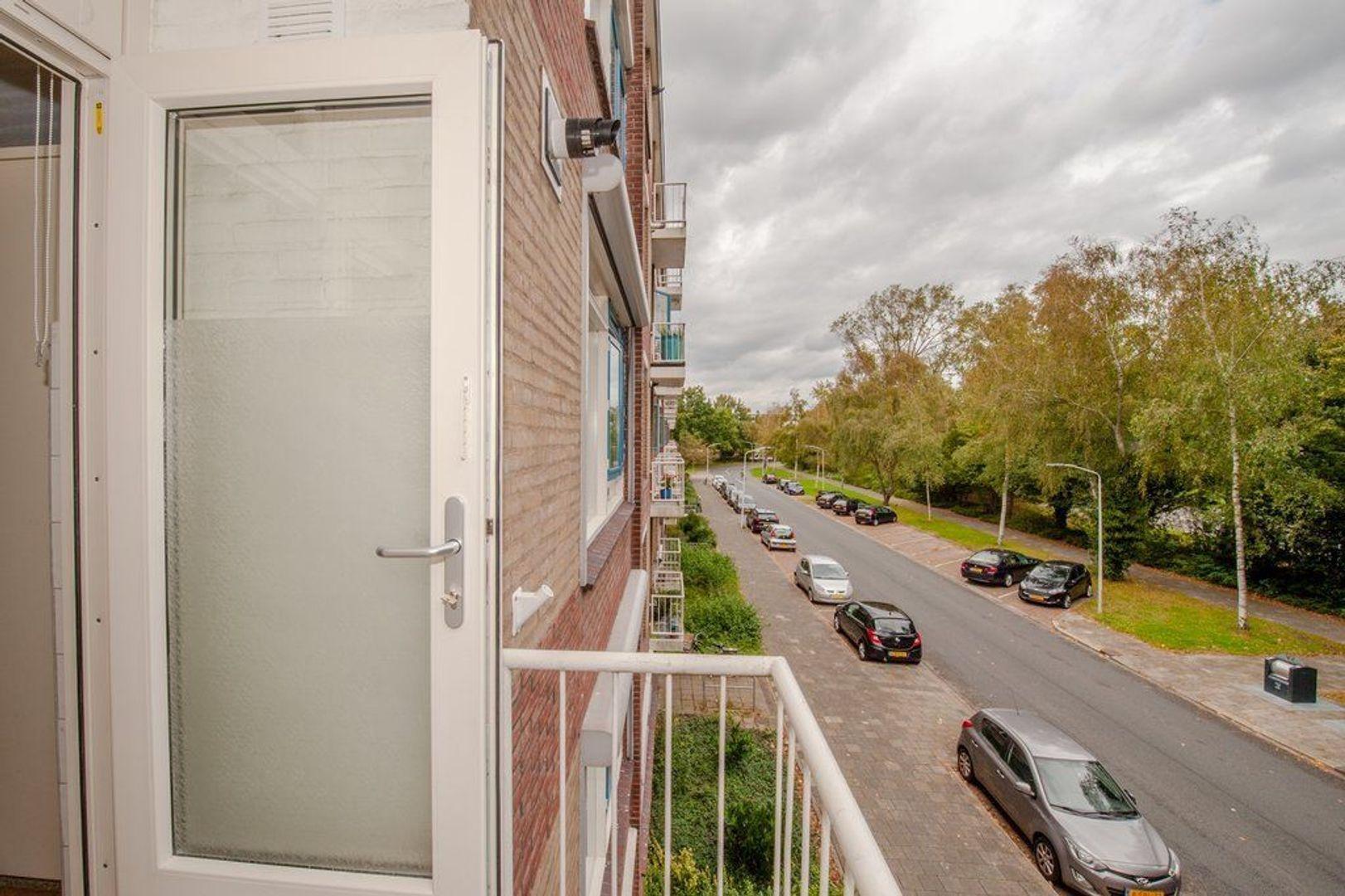 Brahmslaan 83, Leiden foto-30 blur