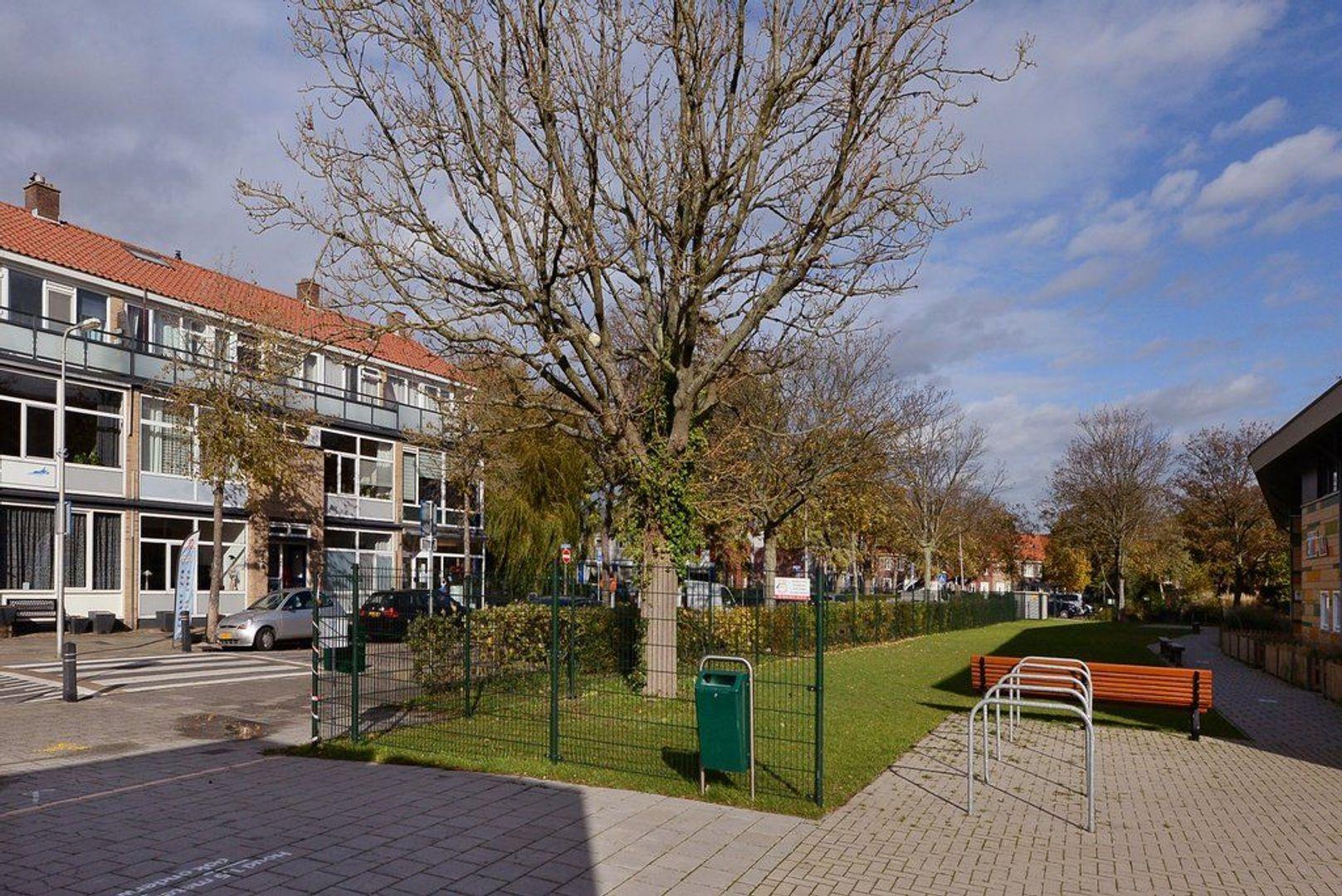 Dr Schaepmanstraat 11, Wateringen foto-30 blur
