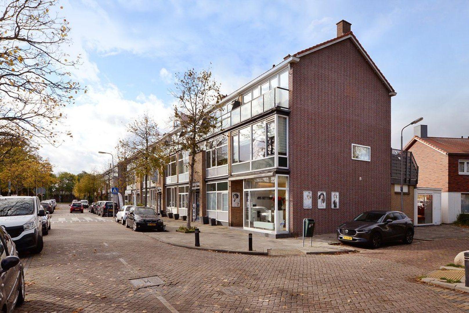 Dr Schaepmanstraat 11, Wateringen foto-31 blur