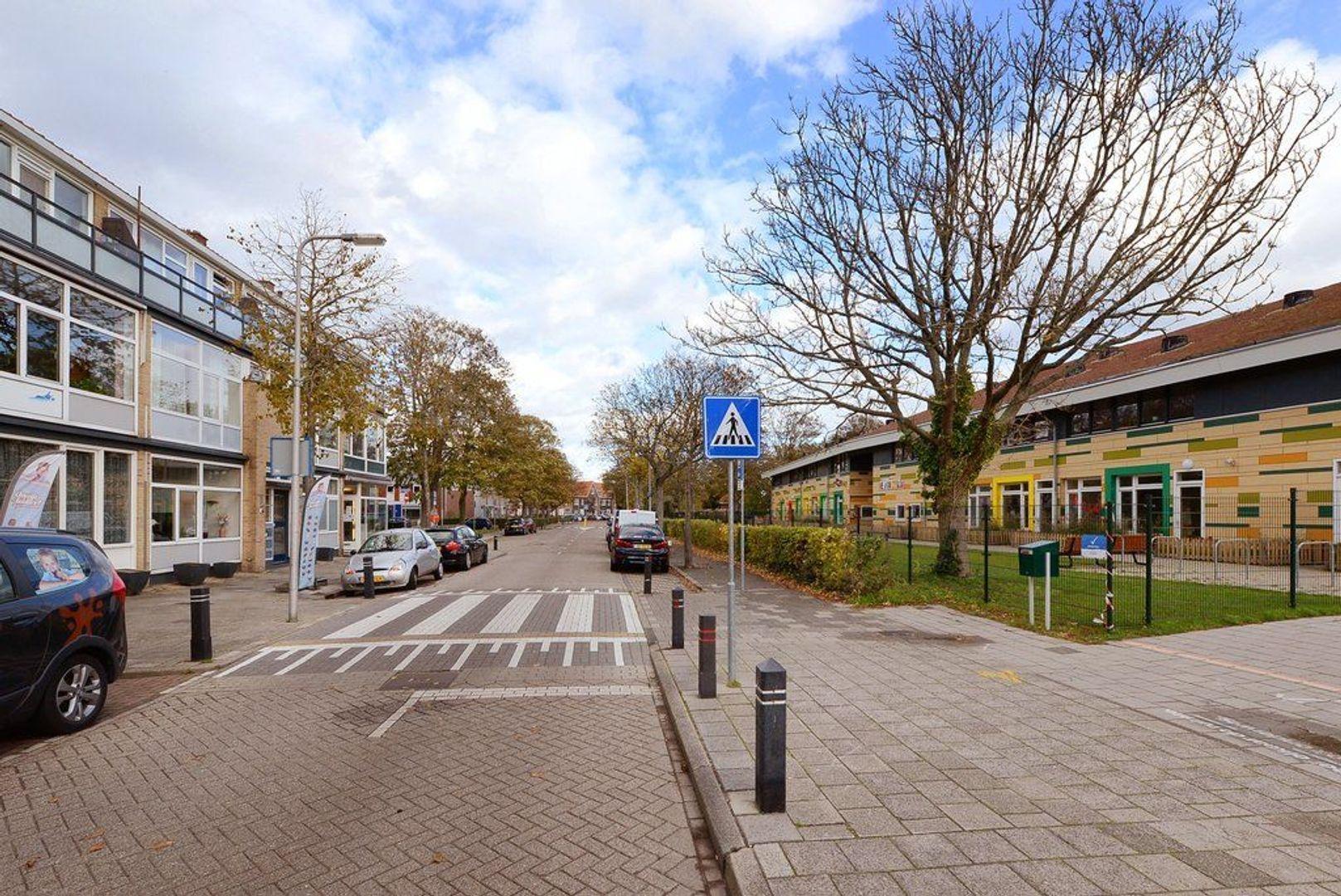 Dr Schaepmanstraat 11, Wateringen foto-32 blur