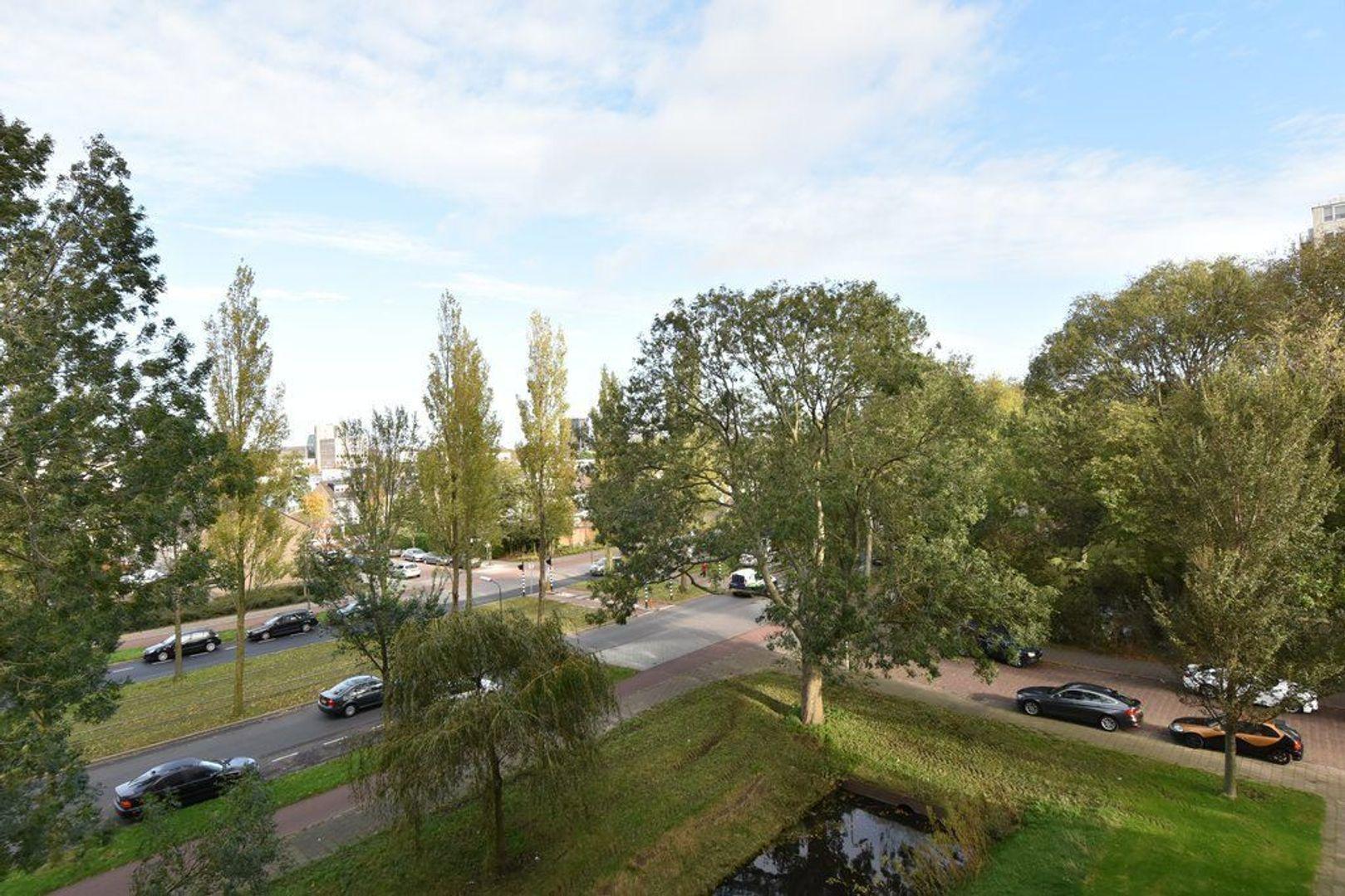 Wezelrade 135 d, Den Haag foto-3 blur