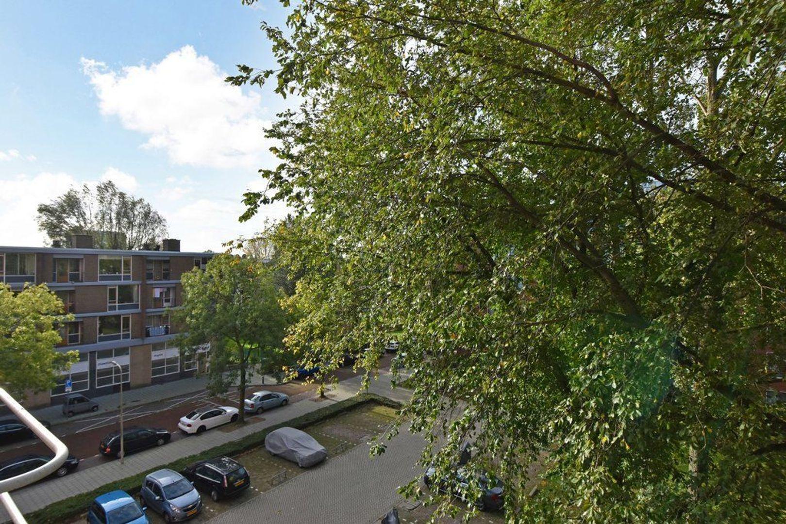 Wezelrade 135 d, Den Haag foto-5 blur