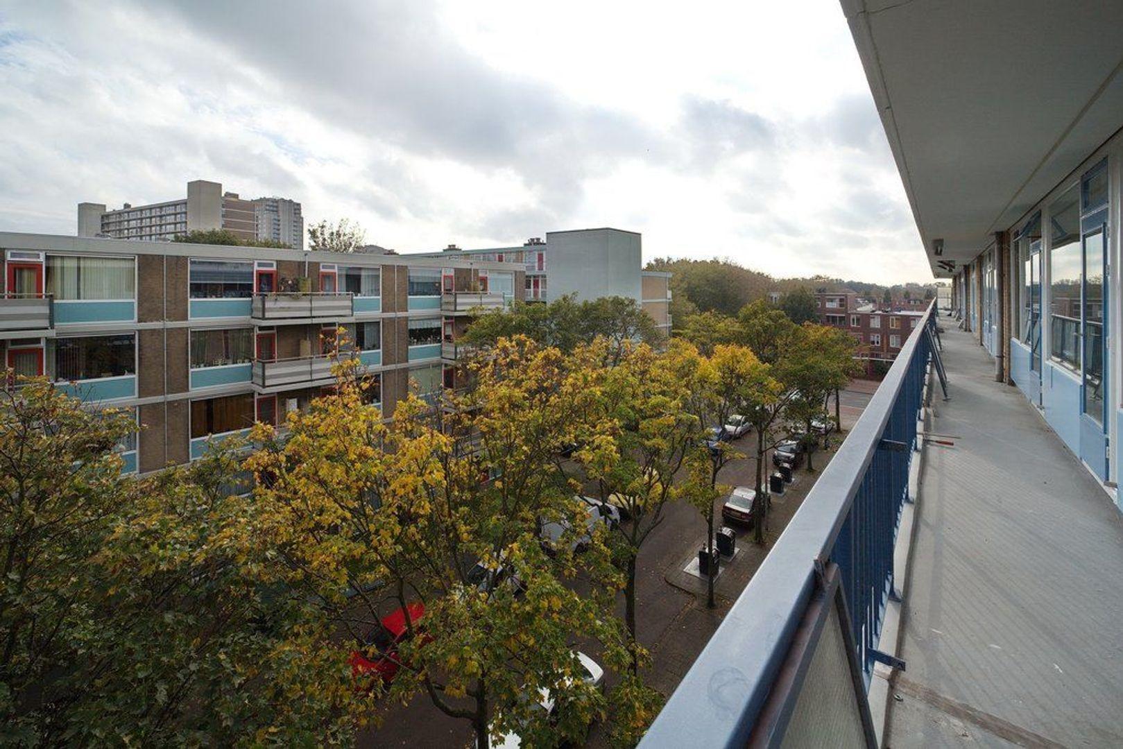 Uitgeeststraat 215, Den Haag foto-19 blur