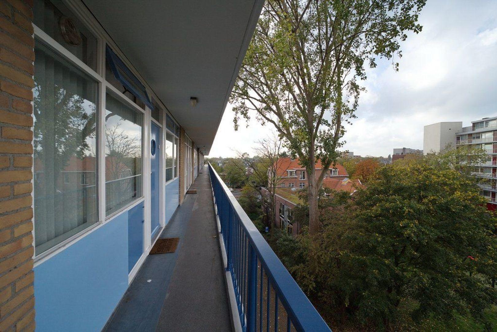 Uitgeeststraat 215, Den Haag foto-21 blur