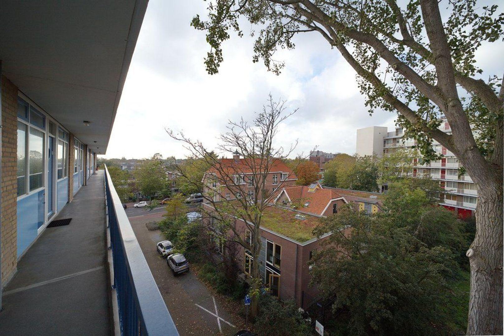Uitgeeststraat 215, Den Haag foto-22 blur