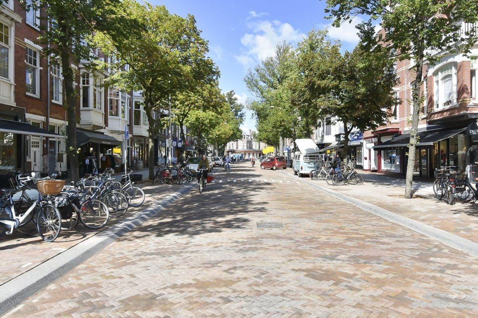 Frankenstraat 55 a, Den Haag foto-50 blur