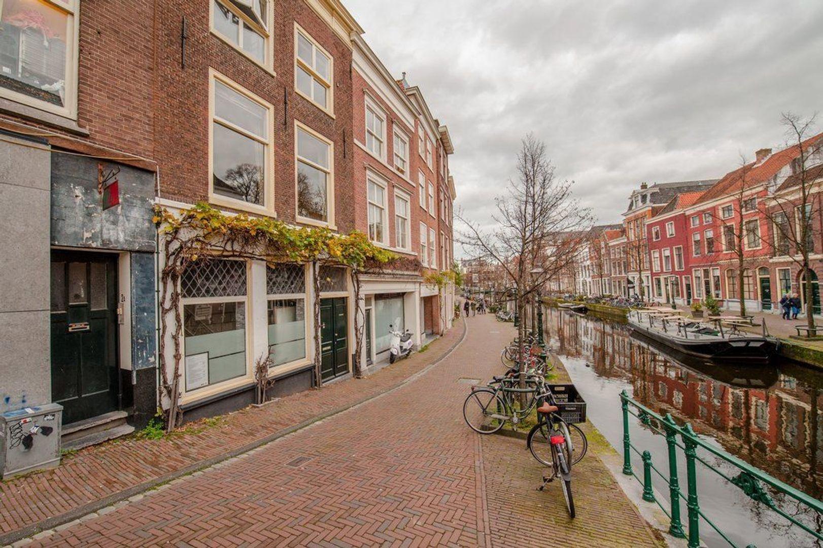 Oude Rijn 2, Leiden foto-8 blur