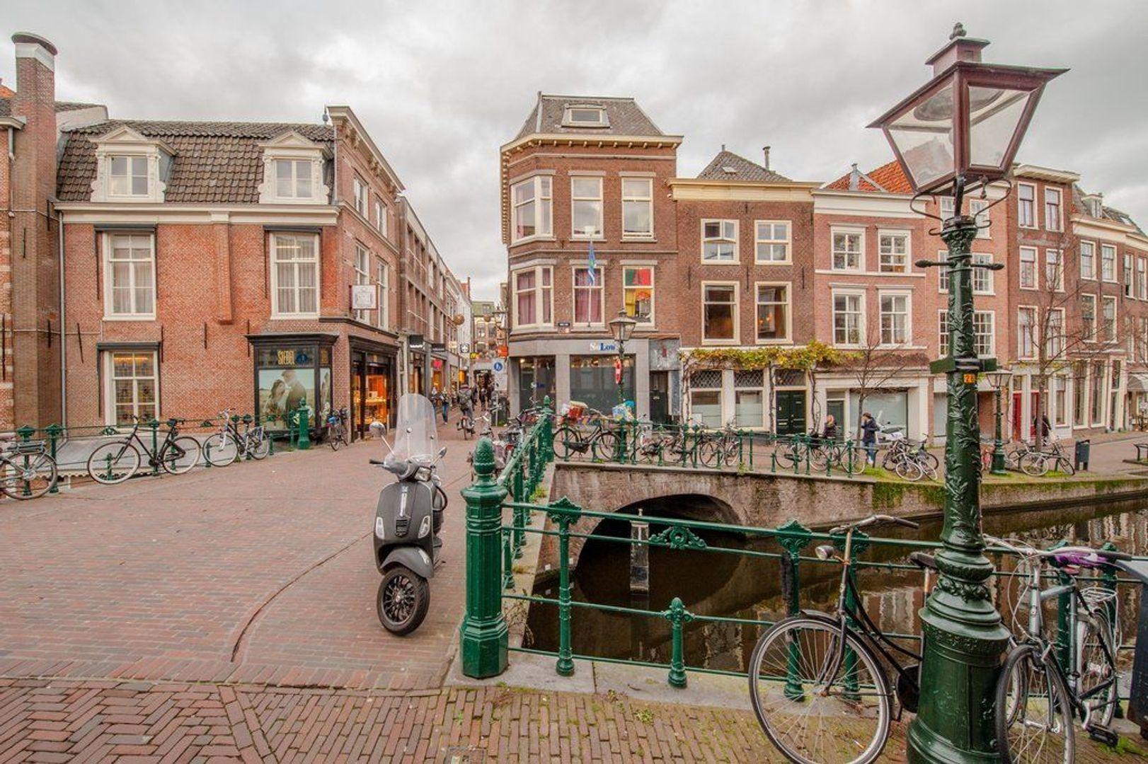 Oude Rijn 2, Leiden foto-57 blur